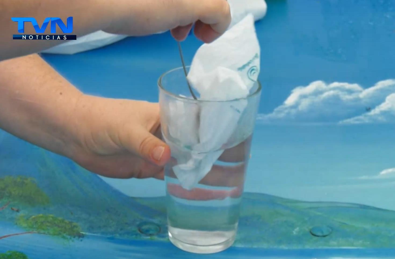 UTN y La Fundación Abuela Ecológica se une para valorar la calidad de los productos amigables con el ambiente