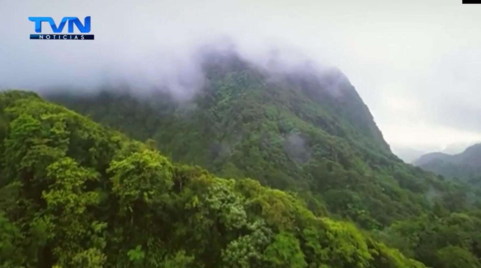 Costa Rica obtiene prestigioso galardón ambiental por proteger los bosques