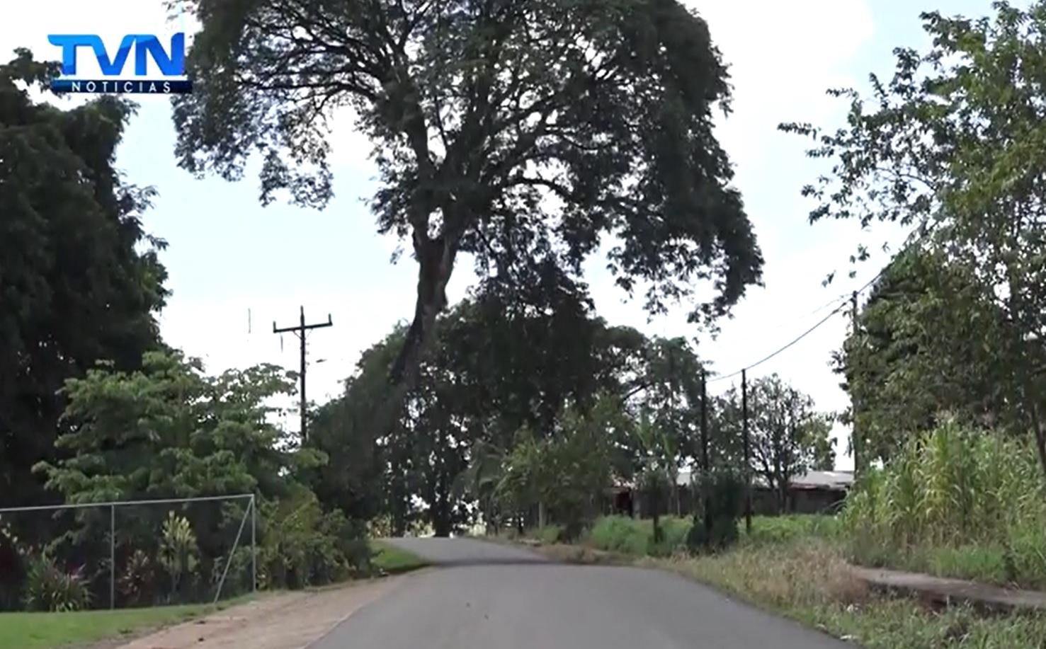En Rincones de Mí Tierra, conoceremos uno de los pueblos más calientes de la zona norte, que irónicamente lleva con nombre de Bueno Aires de Pocosol
